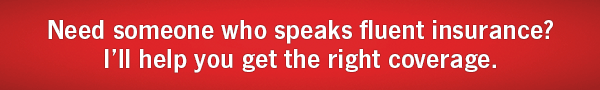 Need someone who speaks fluent Insurance? I'll help you get the right coverage.