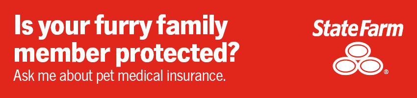 Is your furry family member protected? Ask me about pet medical insurance
