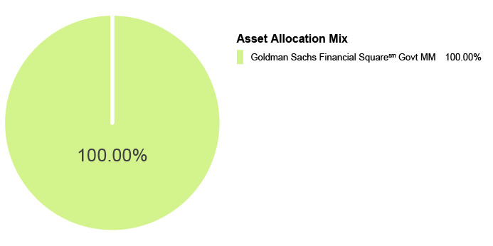 Pie Chart illustrating the Asset Allocation Mix for the State Farm® 529 Savings Plan - Money Market Static Option. Goldman Sachs Financial Square Govt MM 100.00%