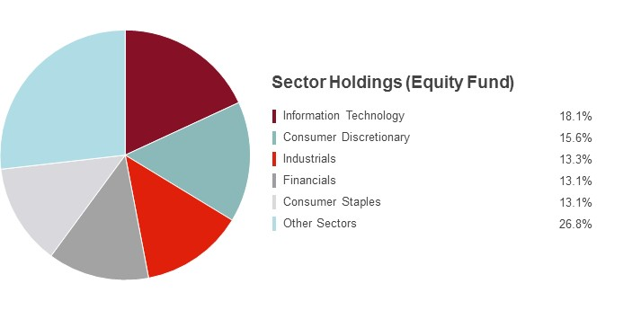Pie Chart illustrating the State Farm Equity fund's Sector Holdings as of 6/30/2016. Information Technology 18.1%, Consumer Discretionary 15.6%, Industrials 13.3%, Financials 13.1%, Consumer Staples 13.1% and Other Sectors 26.8%.