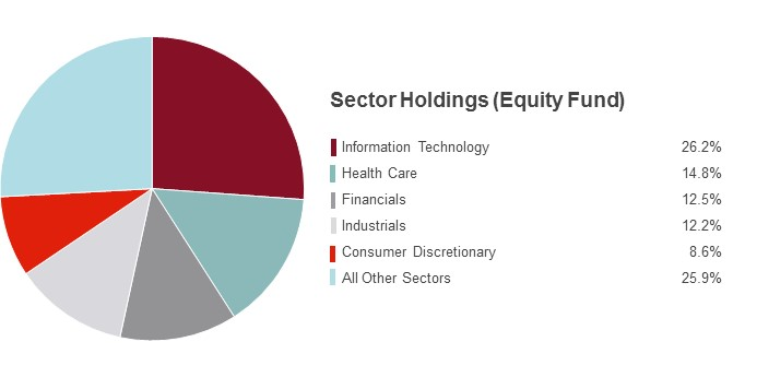 Pie Chart illustrating the State Farm Equity fund's Sector Holdings as of 12/31/2016. Information Technology 20.7%, Consumer Discretionary 14.1%, Health Care 14.0%, Financials 12.3%, Industrials 11.7% and Other Sectors 27.2%.