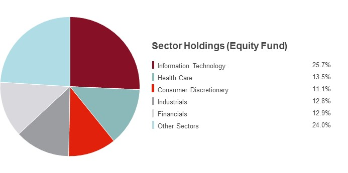 Pie Chart illustrating the State Farm Equity fund's Sector Holdings as of 3/31/2015. Information Technology 18.2%, Consumer Discretionary 17.2%, Health Care 13.4%, Industrials 13.1%, Financials 13.0%, Other Sectors 25.1%.