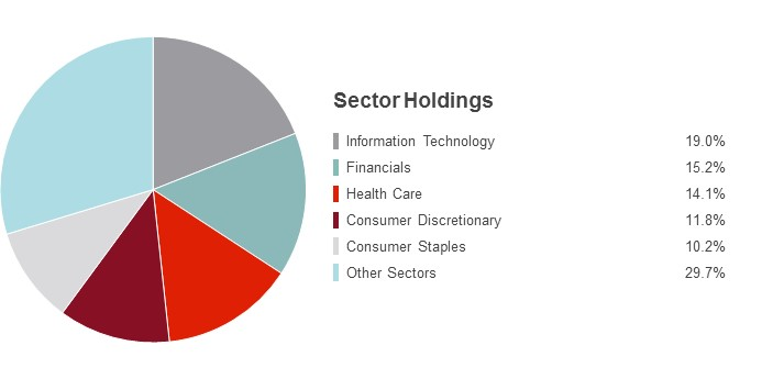 Pie Chart illustrating the State Farm S&P 500 Index fund's Sector Holdings as of 6/30/2016. Information Technology 19.0%, Financials 15.2%, Health Care 14.1%, Consumer Discretionary 11.8%, Consumer Staples 10.2% and Other Sectors 29.7%.