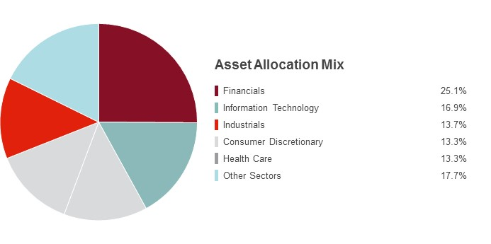 Pie Chart illustrating the State Farm Small Cap Index fund's Sector Holdings as of 6/30/2016. Financials 25.1%, Information Technology 16.9%, Industrials 13.7%, Consumer Discretionary 13.3%, Health Care 13.3% and Other Sectors 17.7%.