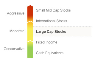 Graphic illustrating the State Farm Equity fund on a risk spectrum. The Fund's risks generally align with the Moderate risks associated with Large Cap Stocks. Types of risks associated with this Fund are detailed below.