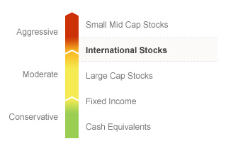 Graphic illustrating the State Farm International Equity fund on a risk spectrum. The Fund's risks generally align with the Moderate to Aggressive risks associated with International Stocks. Types of risks associated with this Fund are detailed below.