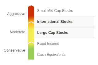 Graphic illustrating the State Farm LifePath 2040 fund on a risk spectrum. The Fund's risks generally align with the Moderate to Aggressive risks associated with Large Cap Stocks and International Stocks. Types of risks associated with this Fund are detailed below.