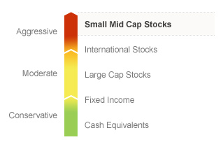 Graphic illustrating the State Farm Small Cap Index fund on a risk spectrum. The Fund's risks generally align with the Aggressive risks associated with Small Mid Cap Stocks. Types of risks associated with this Fund are detailed below.