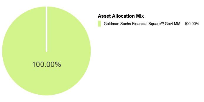 Pie Chart illustrating the Asset Allocation Mix for the State Farm® 529 Savings Plan - Money Market Static Option. Goldman Sachs Financial Square Govt MM 100.00%