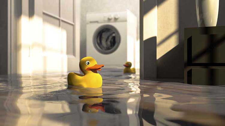 A rubber duck is floating in a flooded basement.