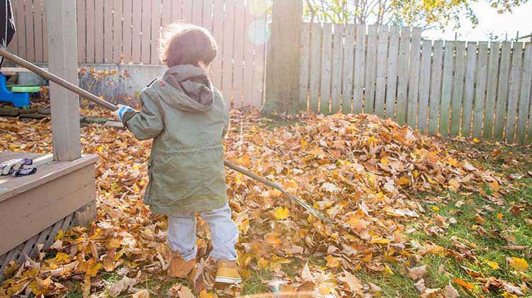7 Essential Autumn Home Maintenance Checks