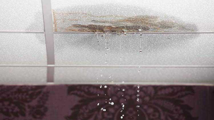 Drop ceiling tile leaking water.