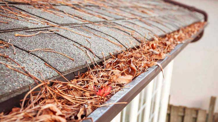 Step-by-Step Guide to Gutter Cleaning