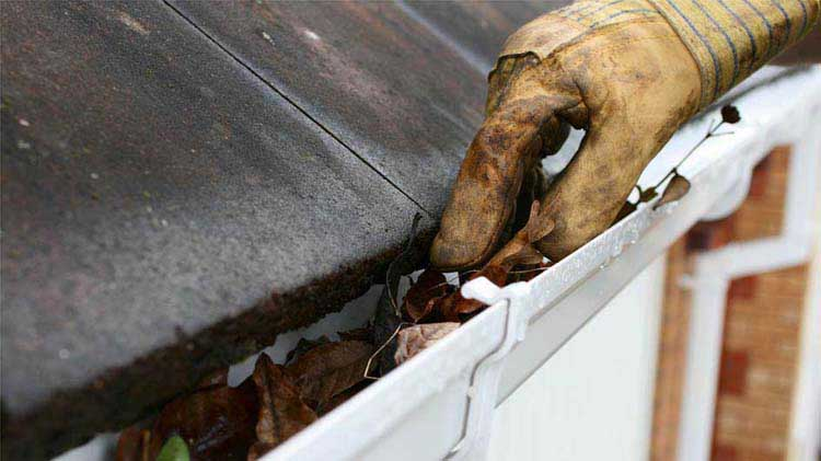 A gloved hand uses a tool to clean leaves from a house gutter during fall home maintenance.