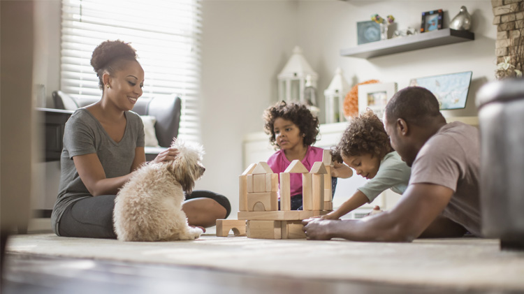A family building blocks while spending time with their dog.