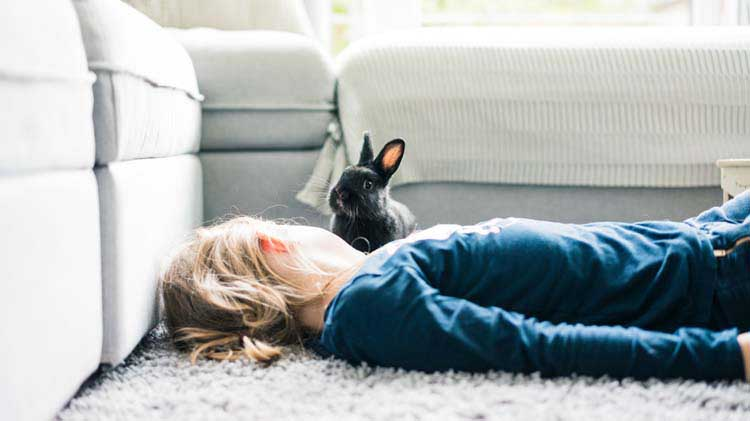 Woman with pet rabbit