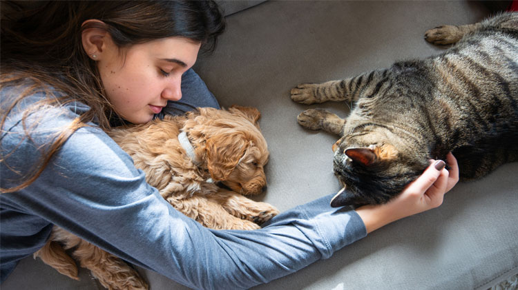Girl comforting her dog and cat