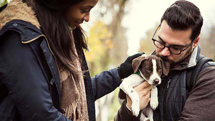 Couple considering why they need pet insurance while holding their new puppy