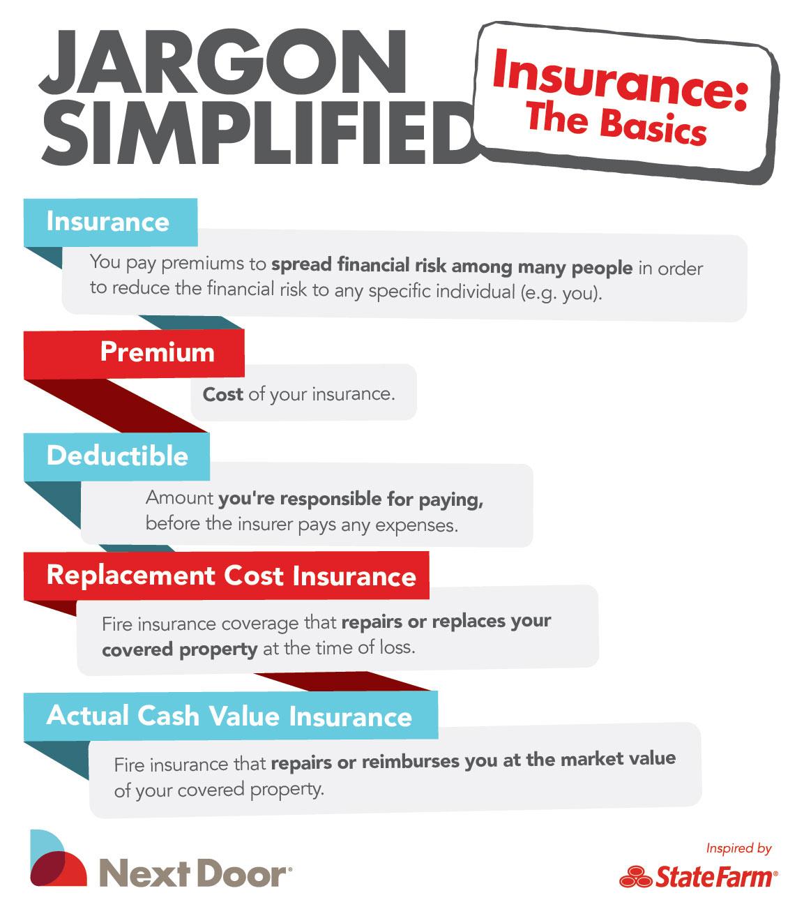 Insurance Basics Infographic