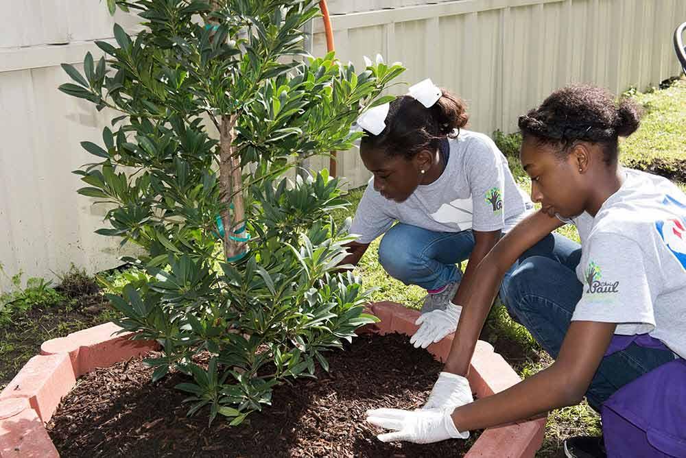 Dos chicas jóvenes plantando un árbol