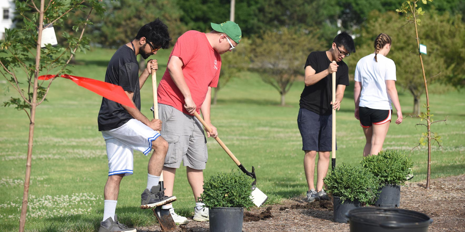 Group of people planting schrubs - Volunteerism