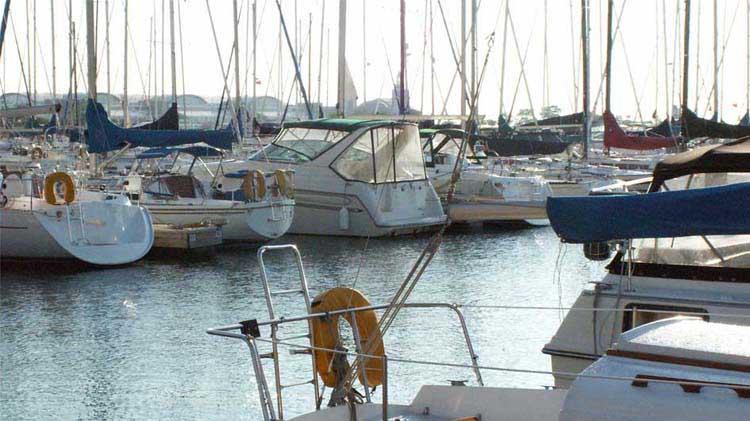 Small boats in a marina