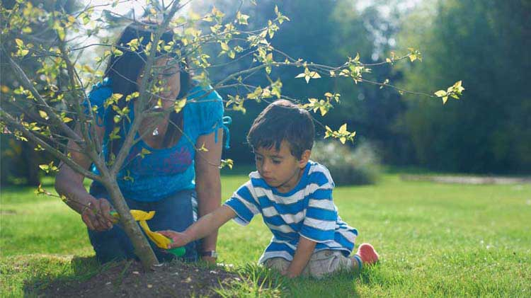 Child planting a tree with his mother