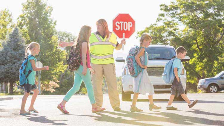 Crossing guard helping children cross the street