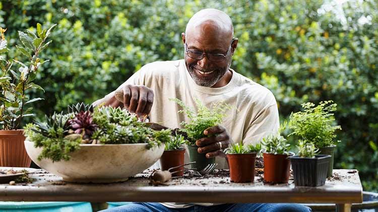 Un señor haciendo jardinería y disfrutando su jubilación.