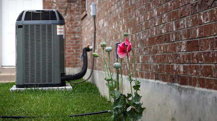 Flowers and an Air conditioning outside a house