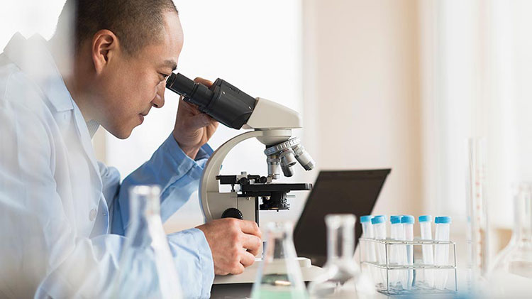 A scientist is looking in to a microscope