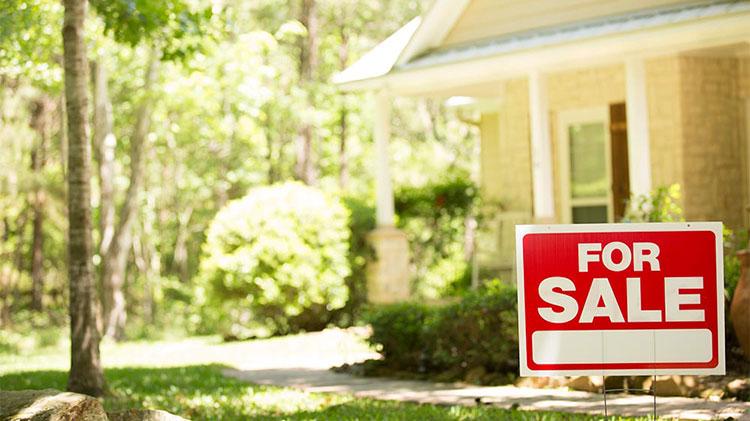 ¿Necesitas un corredor de bienes raíces o comprar una vivienda?