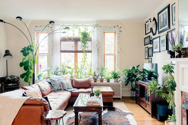 A Plant-Filled Apartment in a Former Mansion