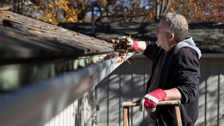 A man is standing on a ladder while cleaning leaves out of the gutter on his home.