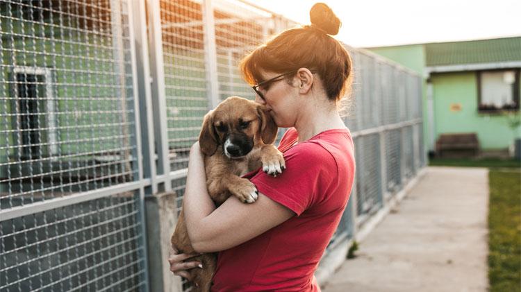 Woman at animal shelter adopting a dog.