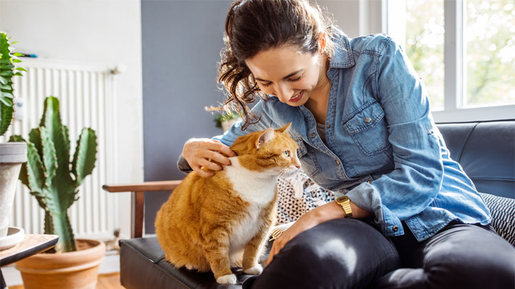 Woman playing with her cat at home with house plants in the background
