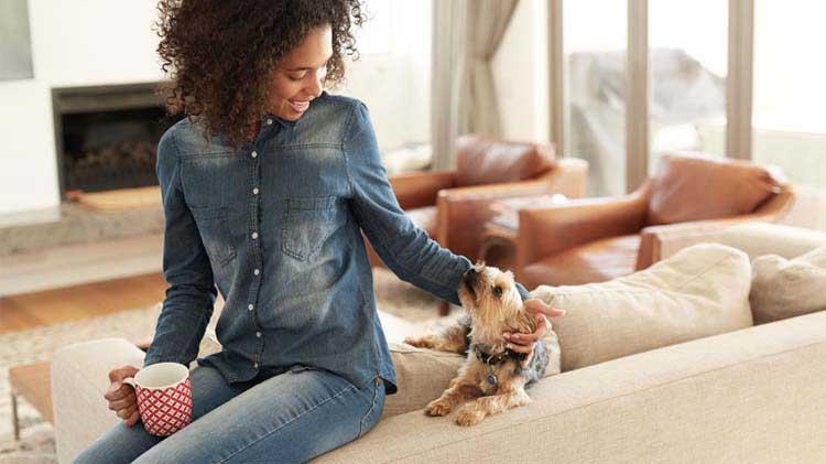 ¿Qué es lo que hace que un inquilino sea bueno? Mantener tu propiedad de alquiler en perfecto estado