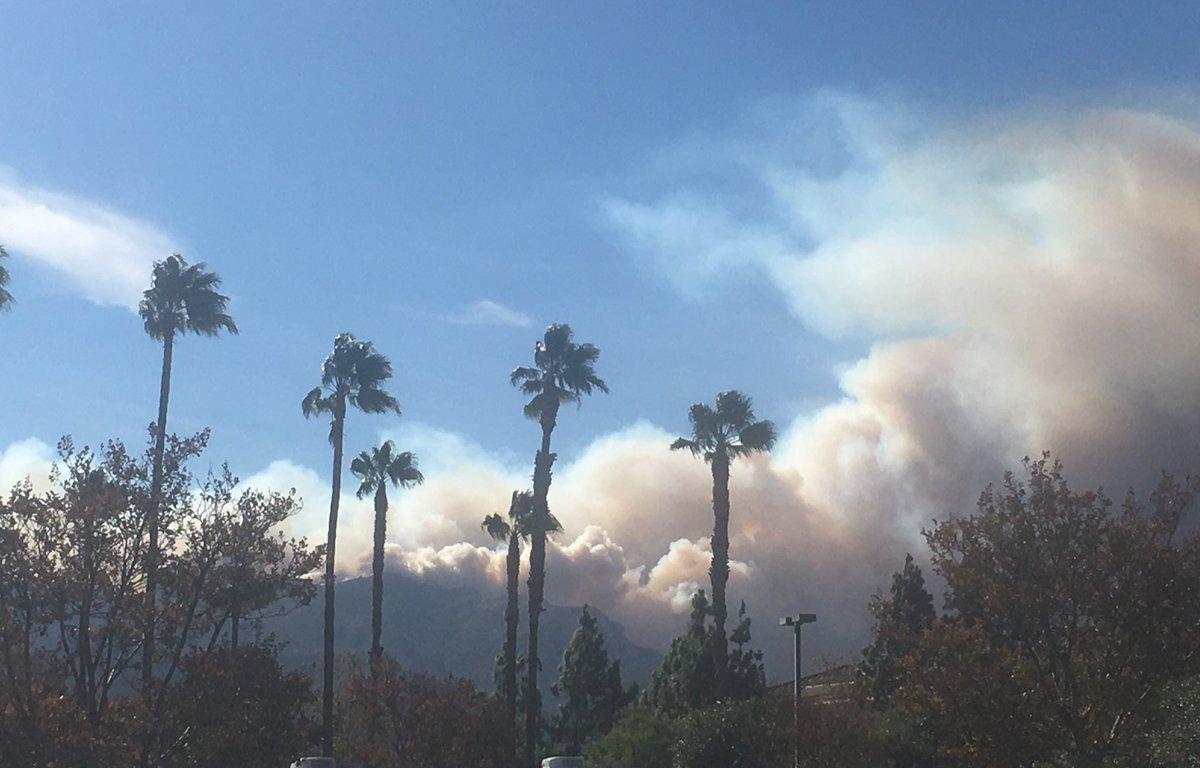 Ayuda para mejorar tu seguridad en caso de incendios forestales